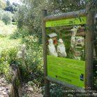Côte d'Azur / Alpes-Maritimes (06) / Parcs naturels départementaux / Espaces naturels protégés / Nice – Parc du Vinaigrier – Photo n° 14