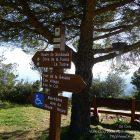 Côte d'Azur / Alpes-Maritimes (06) / Parcs naturels départementaux / Espaces naturels protégés / Parc de la Grande Corniche – Photo n° 15