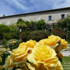 French Riviera – Côte d'Azur / Alpes-Maritimes (06) / Nice / Patrimoine / Monuments historiques / Jardin du monastère – Cimiez – Photo n°20