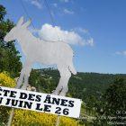Alpes-Maritimes / Arrière-pays / Festivités / Escragnolles (06460) / Fête aux ânes à Escragnolles – Dimanche 26 juin 2016 – Photo n°1