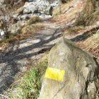 #Alpes-Maritimes (06) / Breil-sur-Roya – Sospel / Côté Nature / Outdoor / Randonnée / Mont Gros – Randonnée pédestre au départ du Col de Brouis – Photo n°13