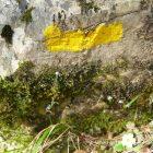 #Alpes-Maritimes (06) / Breil-sur-Roya – Sospel / Côté Nature / Outdoor / Randonnée / Mont Gros – Randonnée pédestre au départ du Col de Brouis – Photo n°18