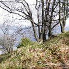 #Alpes-Maritimes (06) / Breil-sur-Roya – Sospel / Côté Nature / Outdoor / Randonnée / Mont Gros – Randonnée pédestre au départ du Col de Brouis – Photo n°25