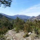 #Alpes-Maritimes (06) / Moyen pays / Saint-Auban / Côté Nature / Outdoor / Randonnée Saint-Auban (06850) – Photo n°23