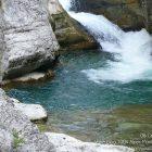 #Alpes-Maritimes (06) / Moyen pays / Saint-Auban / Côté Nature / Outdoor / Randonnée Saint-Auban (06850) – Photo n°36