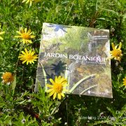 #CotedAzurFrance / Alpes-Maritimes (06) / Nice / Parcs & Jardins / Jardin Botanique de la Ville de Nice – Corniche Fleurie – Botanical Garden of Nice – Photo n°17