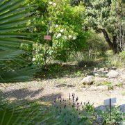 #CotedAzurFrance / Alpes-Maritimes (06) / Nice / Parcs & Jardins / Jardin Botanique de la Ville de Nice – Corniche Fleurie – Botanical Garden of Nice – Photo n°20