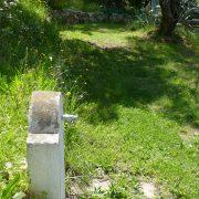 #CotedAzurFrance / Alpes-Maritimes (06) / Nice / Parcs & Jardins / Jardin Botanique de Nice – Corniche Fleurie – Botanical Garden of Nice – Photo n°21
