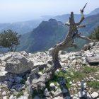 #FrenchMerveilles / Région PACA / Côte d'Azur / Alpes-Maritimes (06) / Pays Côtier / Sainte-Agnès / Côté Nature / Outdoor / Randonnée / Pointe de Siricocca – Photo n°1