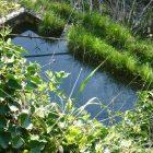 #FrenchMerveilles / Région PACA / Côte d'Azur / Alpes-Maritimes (06) / Pays Côtier / Sainte-Agnès / Côté Nature / Outdoor / Randonnée / Pointe de Siricocca – Photo n°11