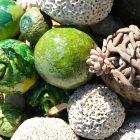 #CotedAzurFrance / Alpes-Maritimes (06) / Gattières / Visites & Découvertes  / Parcs & Jardins / Le Jardin des fleurs de poterie –  Labellisé Jardin remarquable – Photo n° 9