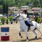 #CotedAzurFrance / Alpes-Maritimes (06) / Levens / Manifestations & Festivités / Fête du Cheval – 29 et 30 juillet 2017 – Grand pré de Levens – Photo n°41