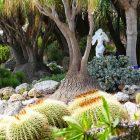 #CotedAzurNow / French Riviera / Principauté de Monaco / Parcs & Jardins / Jardin Exotique Monaco – Septembre 2017 – Photo n°16