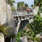 #CotedAzurNow / French Riviera / Principauté de Monaco / Parcs & Jardins / Jardin Exotique Monaco – Septembre 2017 – Photo n°24