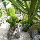 #CotedAzurNow / French Riviera / Principauté de Monaco / Parcs & Jardins / Jardin Exotique Monaco – Septembre 2017 – Photo n°25