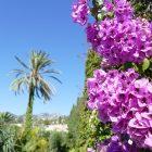 #CotedAzurNow / Alpes-Maritimes (06) / Menton / Parcs & Jardins / Jardin de la Villa Maria Serena – Menton – Septembre 2017 – Photo n°22