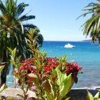 #CotedAzurNow / Alpes-Maritimes (06) / Menton / Parcs & Jardins / Jardin de la Villa Maria Serena – Menton – Septembre 2017 – Photo n°34